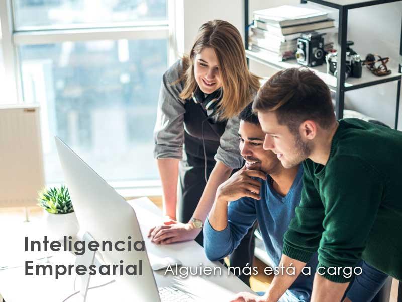 ERP Inteligencia Empresarial mv