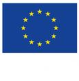 ERP Fondo social europeo